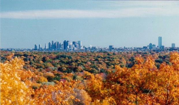 Fall, Boston in the background (Photo: Wikipedia)