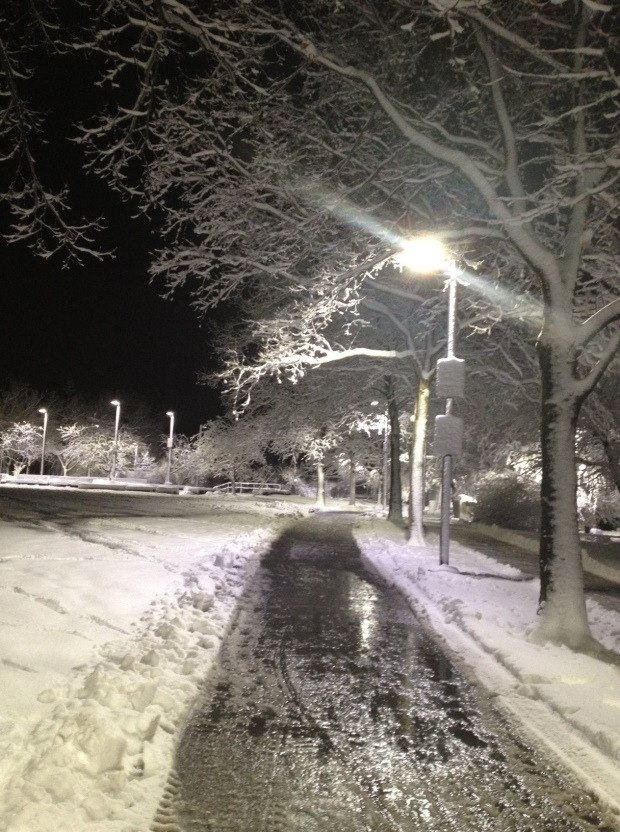 Southwest Corridor Park, Jamaica Plain, Boston, this evening (photo: DY)